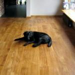 Rustik oakfloor 3